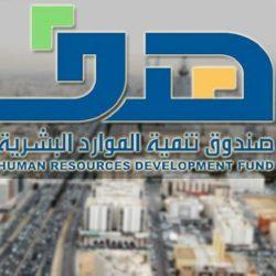 وظائف إدارية شاغرة بهيئة تنمية الصادرات