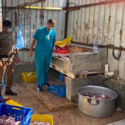 """""""الصحة"""" مصاب بفيروس كورونا ينقل العدوى ل20 شخصاً من عائلته"""