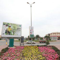 توجيه عاجل من أمير #الباحة بتوفير مسكن لمسنة «شبك البر»