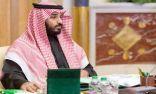 #محمد_بن_سلمان ييبحث مع وزير الخارجية المصري الأوضاع في الساحة العربية والإسلامية