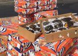 مُصادرة واتلاف 72 طن مواد غذائية – فاسدة – في سوق الاحساء المركزي