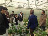 طلاب مدرسة العمران الثانوية في زيارة المركز الإرشادي للمزرعة المتكاملة
