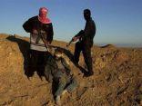 اختطاف مواطن وضربه وتصويره في منطقة زراعية بالعوامية