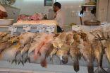 البدء في تطبيق قرار وضع قائمة الاسعار على سوق السمك المركزي بالدمام