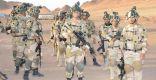 وظائف شاغرة في وحدات الحرب الإلكترونية بالقوات البرية